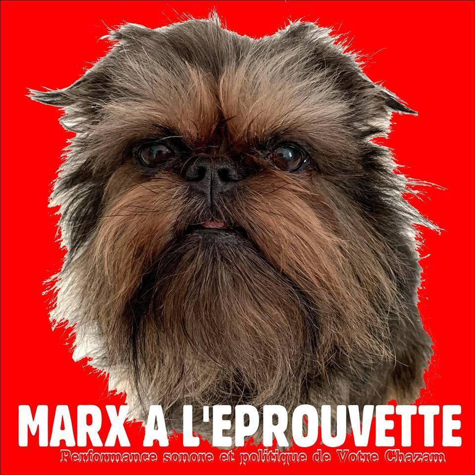 Marx à l'éprouvette |  Radio