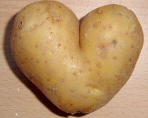 Le Journal de grosse patate | Gratuit Théâtre