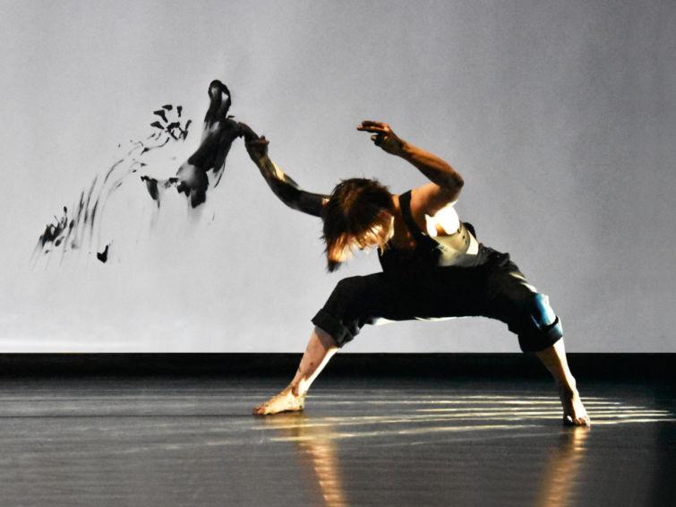Humanimal | Écoles Kids Danse