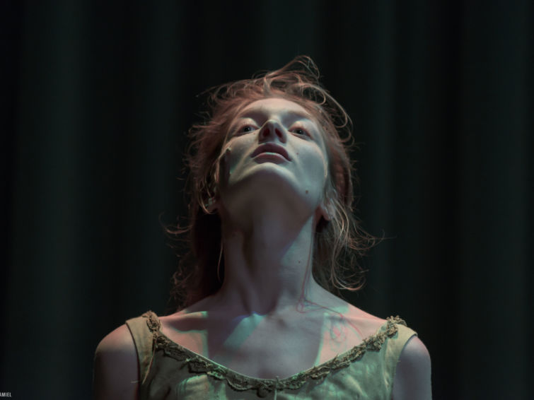 Paying for it | Rencontres Danse Cirque Théâtre Théâtre