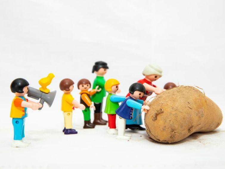 Des patates et des luttes   Rencontres Radio