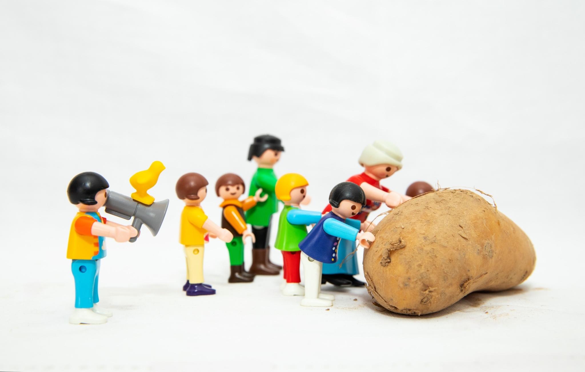 Des patates et des luttes | Rencontres Radio